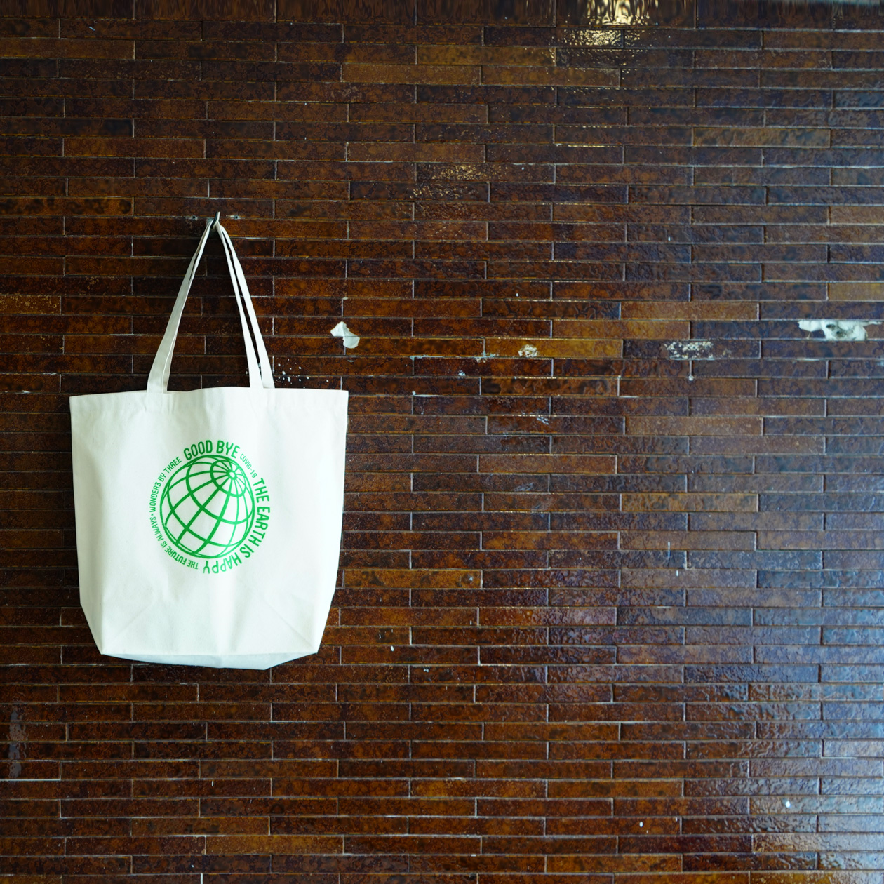 Type-A : Standard Canvas Tote Bag